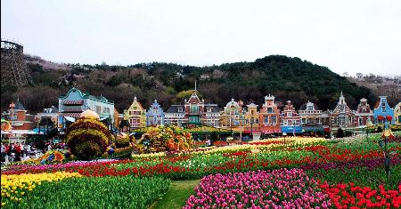 ทัวร์เกาหลี Spring Suwon Seoul 6 วัน 3 คืน เริ่มเพียง 29,900 บาท/ท่าน Picture