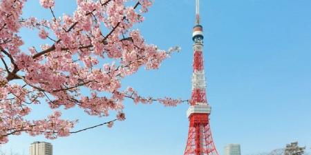 แจกโค้ดส่วนลดเพิ่ม 10% เมื่อจองโรงแรมใน เมืองโตเกียว ประเทศญี่ปุ่น Picture